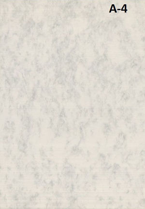 MICHEL. PAPEL PERGAM.A4 MARMOL25U 2602 02602229 MAK035194