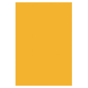 SADIPAL CARTULINA SADIPAL 50X65 FLUO.NARJ/10U 15409/601790 MAK600119
