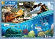 KID'S BOX FOR SPANISH SPEAKERS  LEVEL 6 POSTERS 2ND EDITION