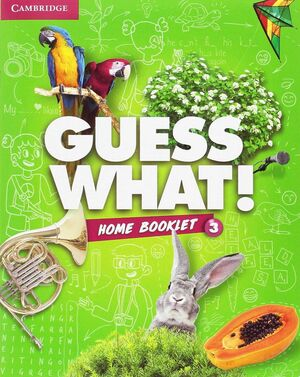 GUESS WHAT SPECIAL EDITION FOR SPAIN LEVEL 3 ACTIVITY BOOK WITH GUESS WHAT YOU C